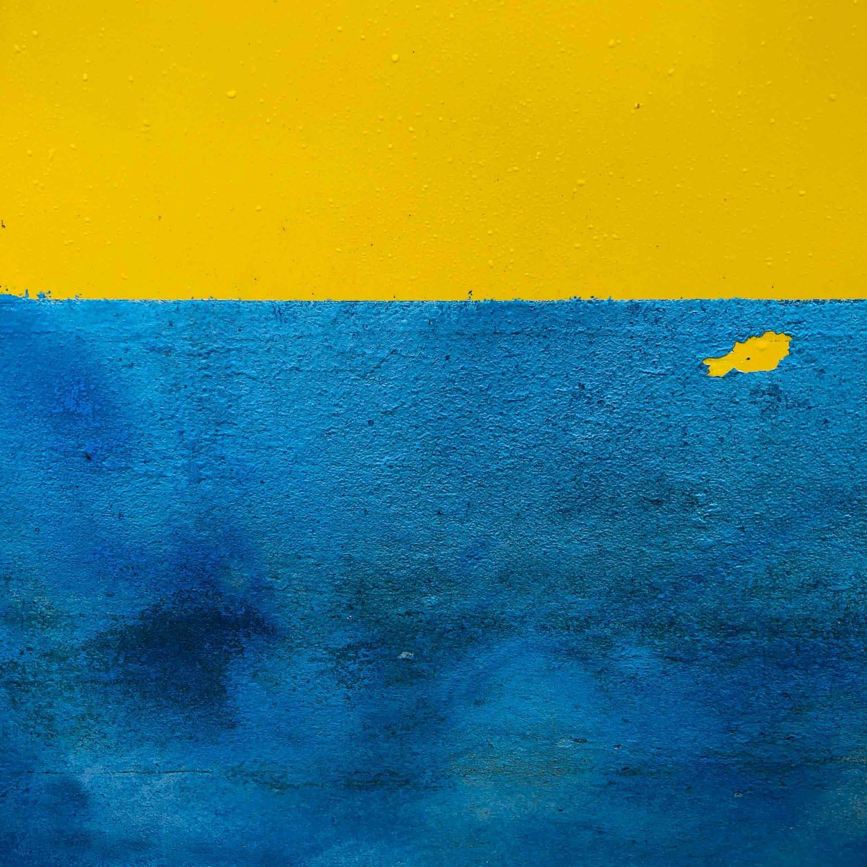 Mel Collie  | Goldfish