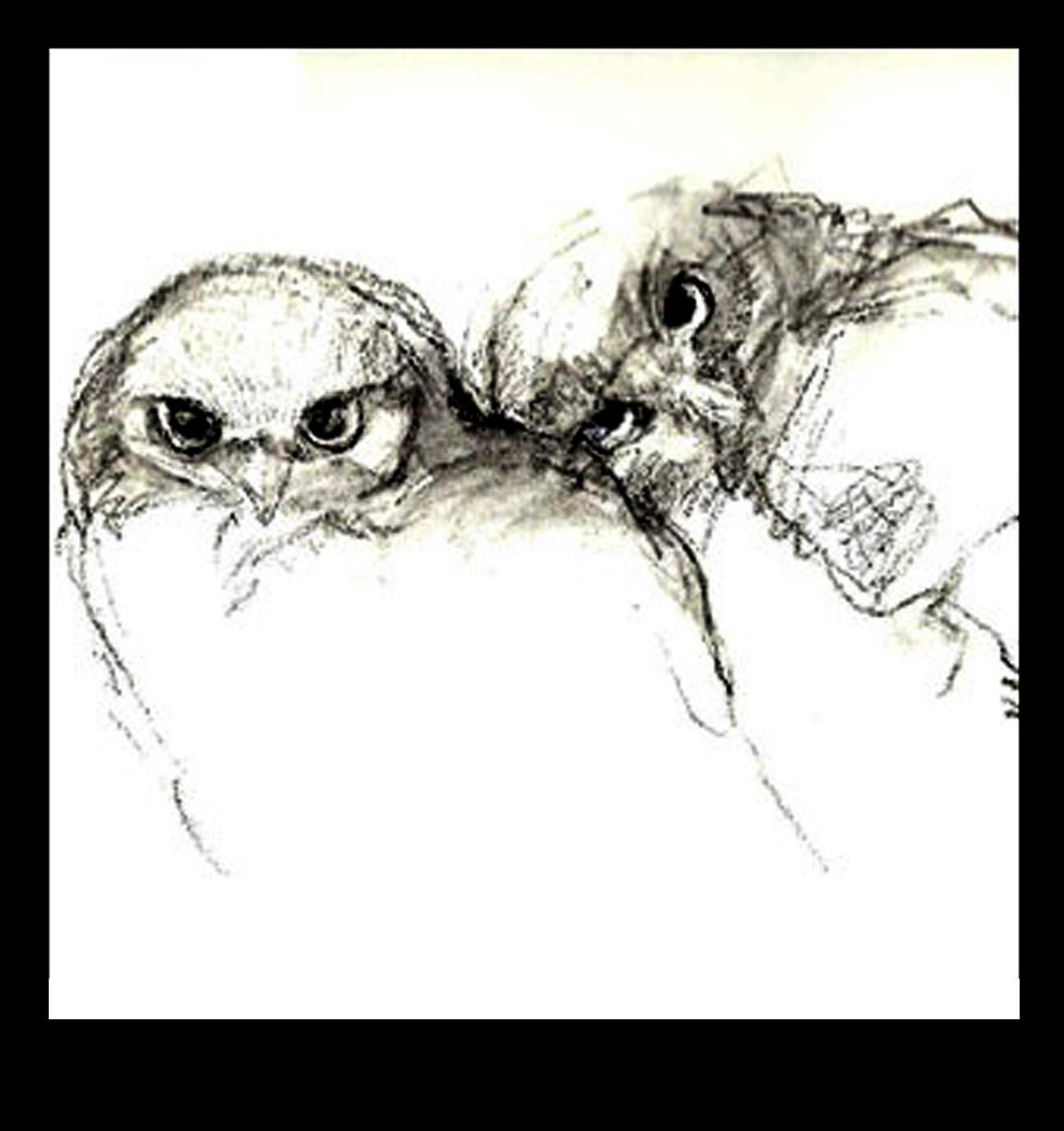 2 owls 300.jpg