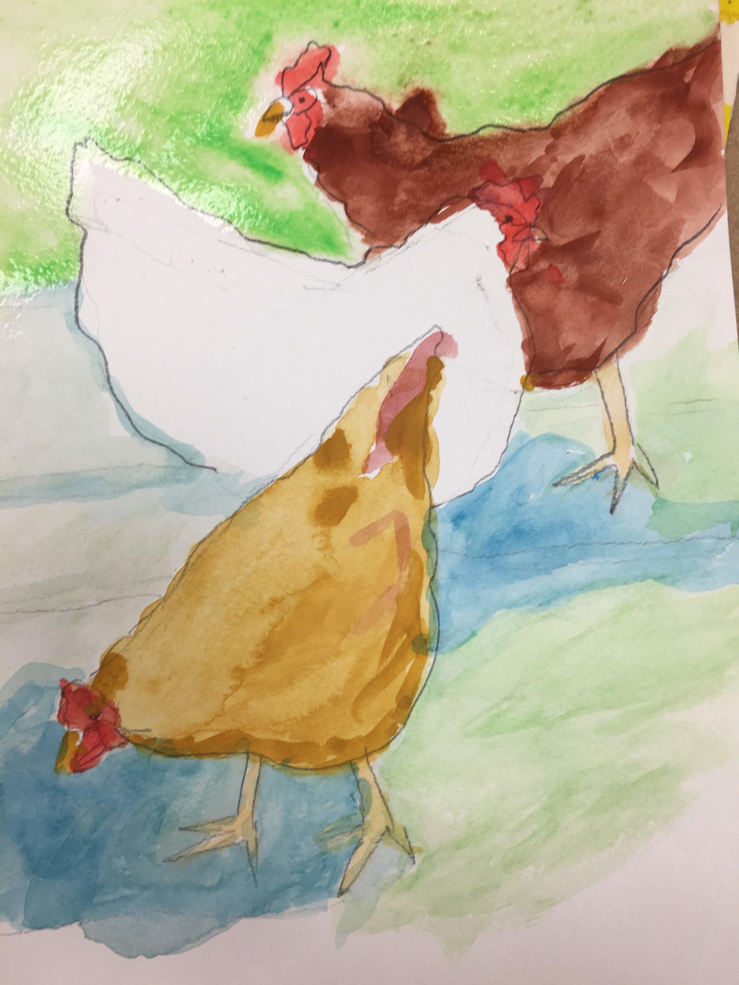 chicken cw 1.JPG