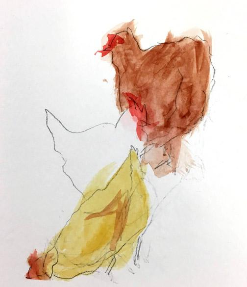 chicken cw 2.JPG