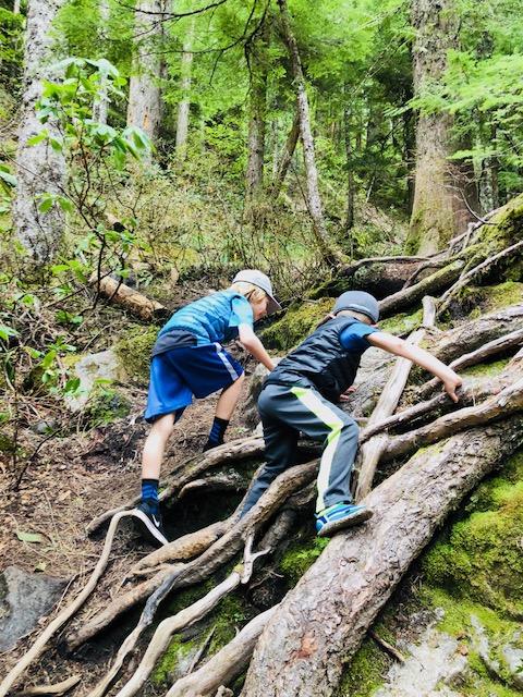 boys climbing.jpg