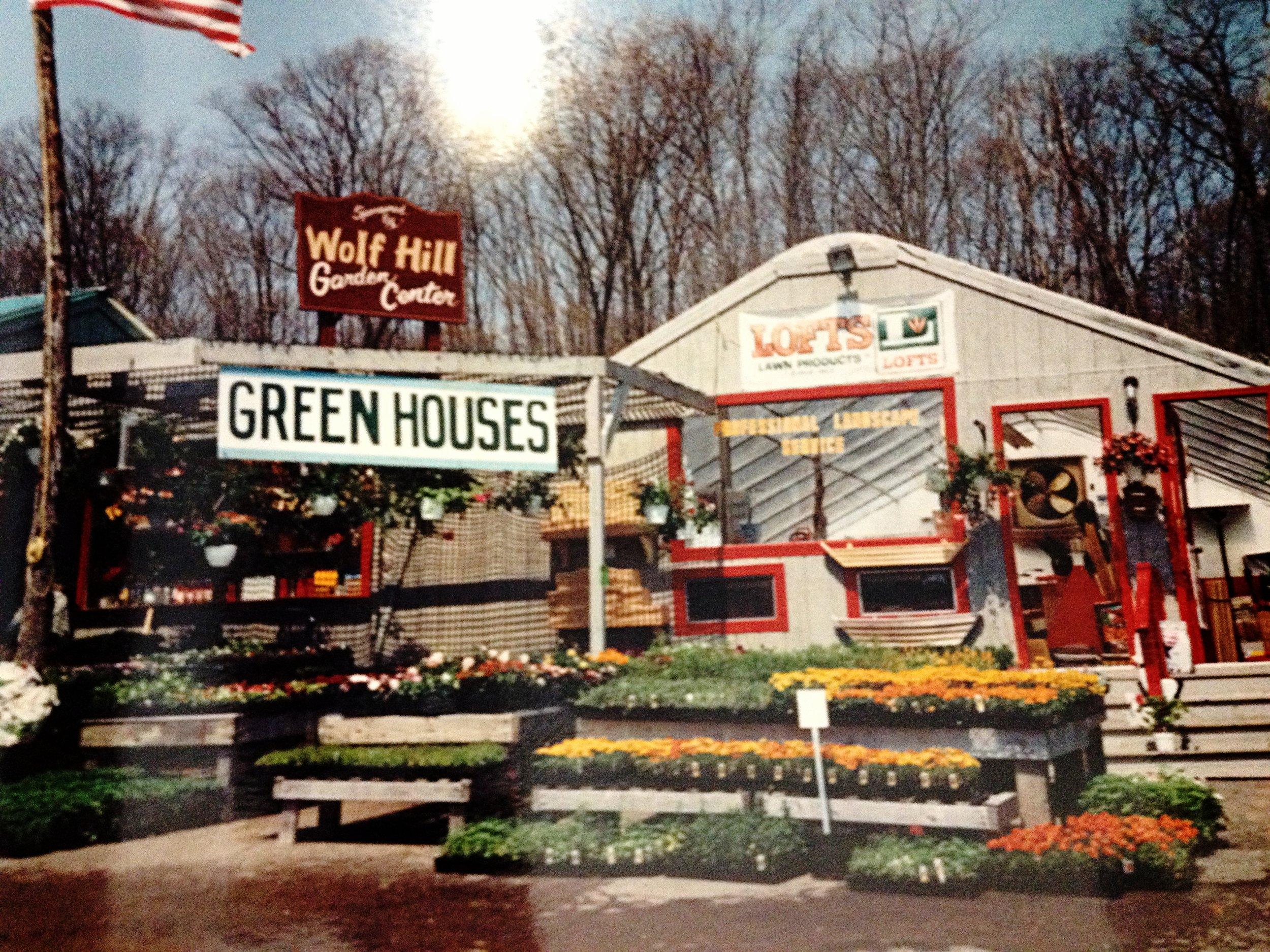 Wolf Hill Gloucester, circa 1980