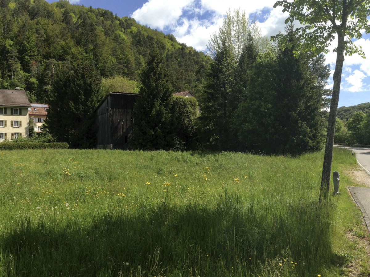 RZS_Ort_Haus_09.jpg