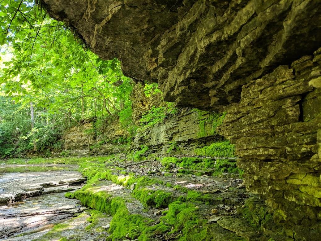 Indiana_Wilderness.jpg