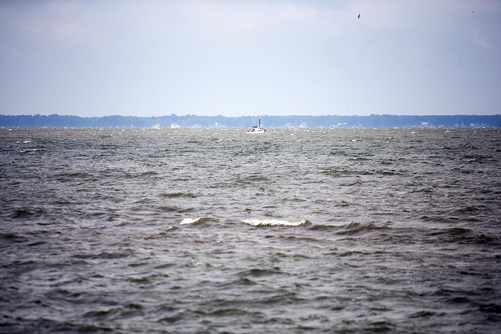Watermen-sized-1000-16.jpg