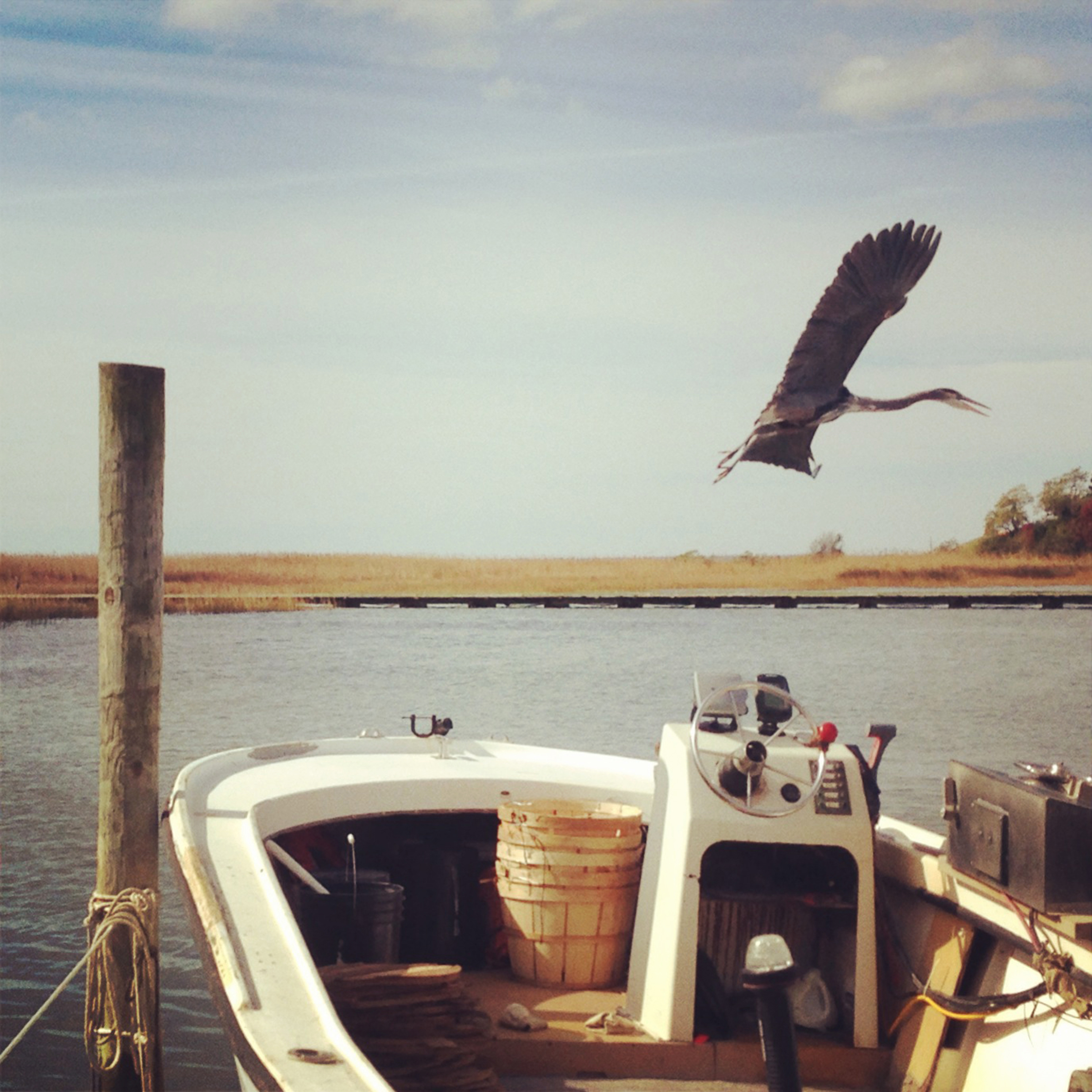 Photo Book - #BoatLife, a Photographic Essay is a photo book created in 2014, depicting the four years Jesse spent living on a sailboat in the Chesapeake Bay. Every photo in the book was captured with an iPhone.