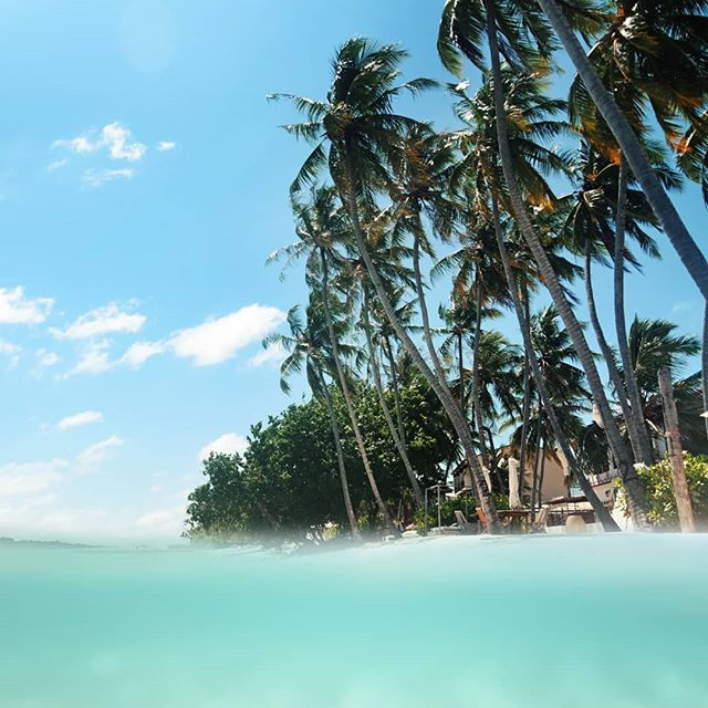 The sun always shines after the rain.  @visit_thulusdhoo #maldives #maldivessurf #surfmaldives #islandlife #thulusdhoo #island_features ##ocean #krakeninn #sunnyside #maldivesislands #travelmaldives #coralreef #maldivesmania #underwaterphotography #beautifulmaldives #omaldives @maldives @officialmaldives #travelzoouk#maldives_ig #surfblog #surfblogger #atol #surftravel #surflife #oceanlife #mynikonlife #endlessmaldives
