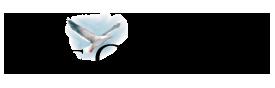 Cape Cod Times logo.png