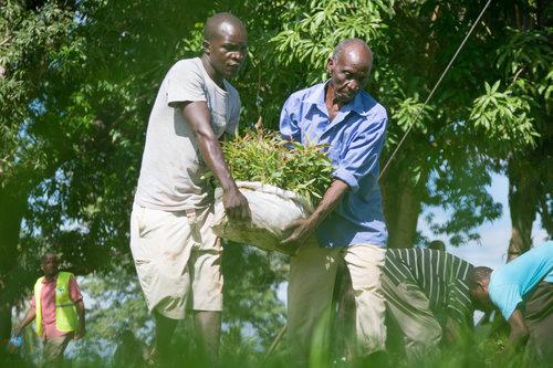 Kenya_May2017_One+Tree+Planted+5.jpg