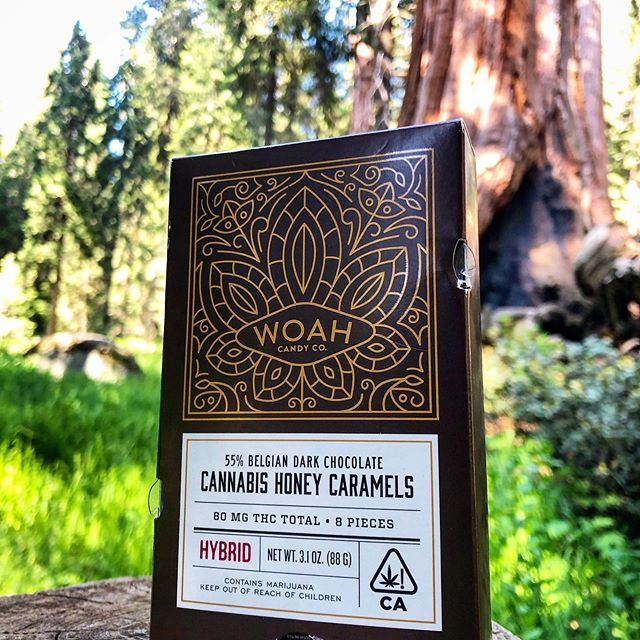 Our edibles and nature go hand in hand 🌲🌳 #trees 📷 by @ohhdaniel