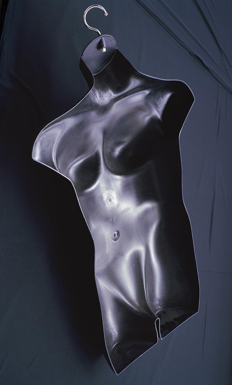 Torso , 2013 Archival pigment print 42 x 25 inches   ————