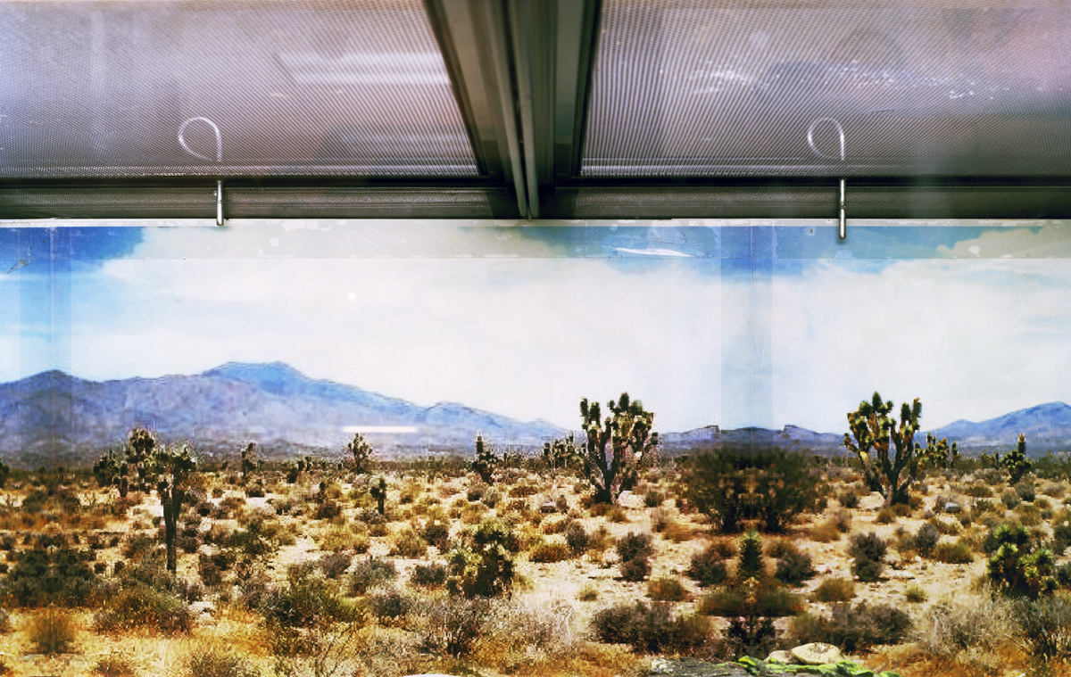 High Desert, Low Ceiling , 2010 Archival pigment print 25 x 40 inches   ————
