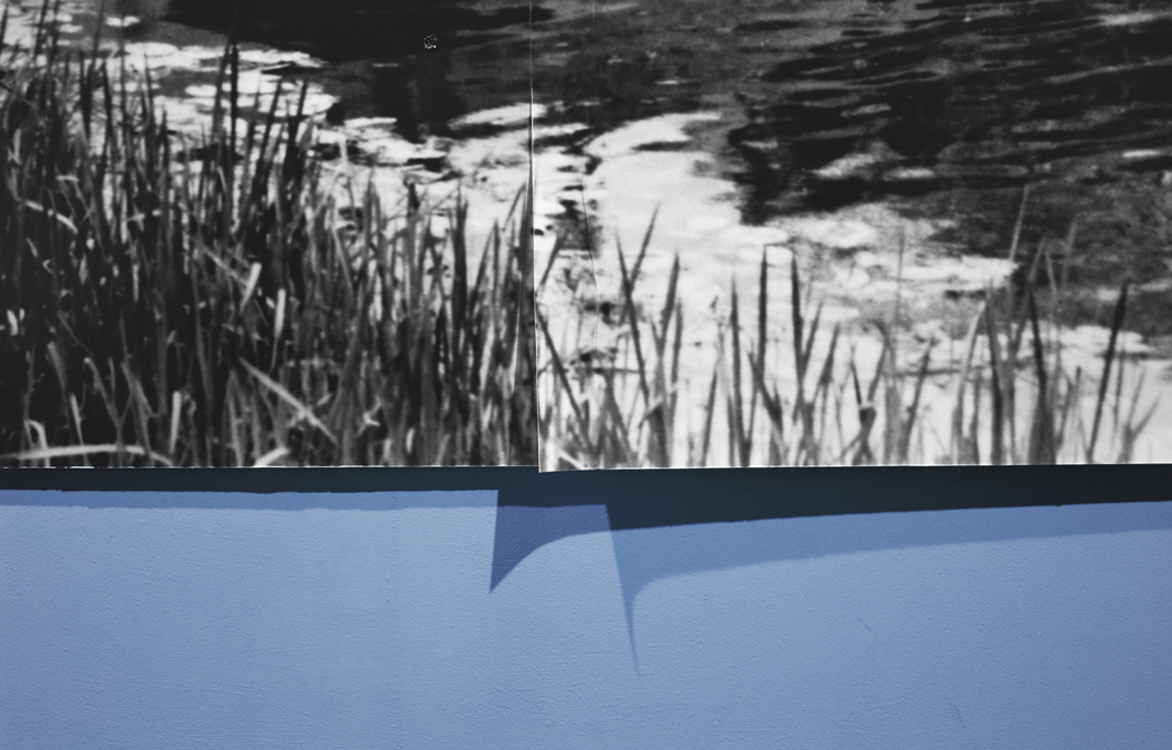 Riverbank , 2010 Archival pigment print 27 x 42 inches   ————