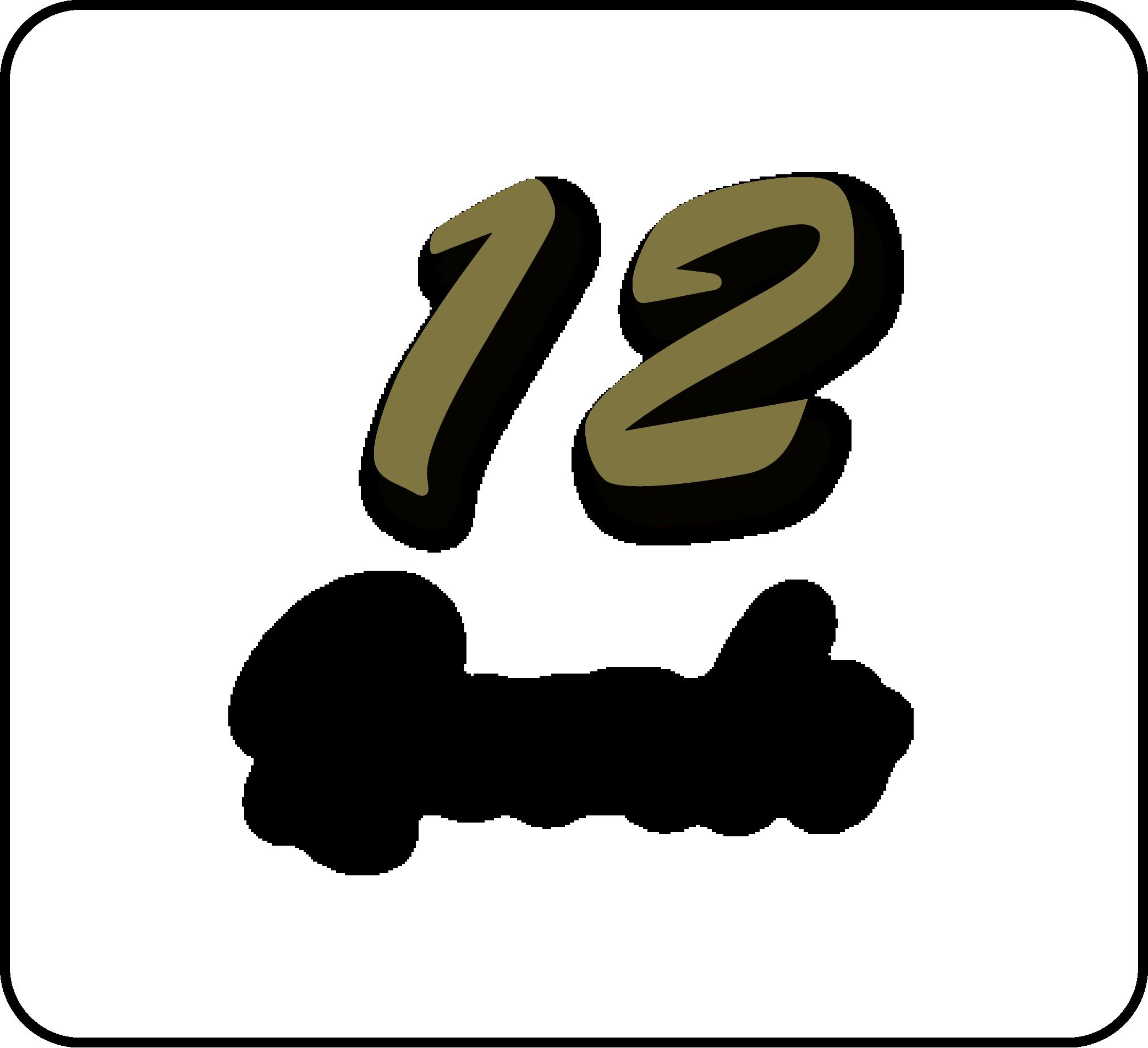 12 RECUERDOS -