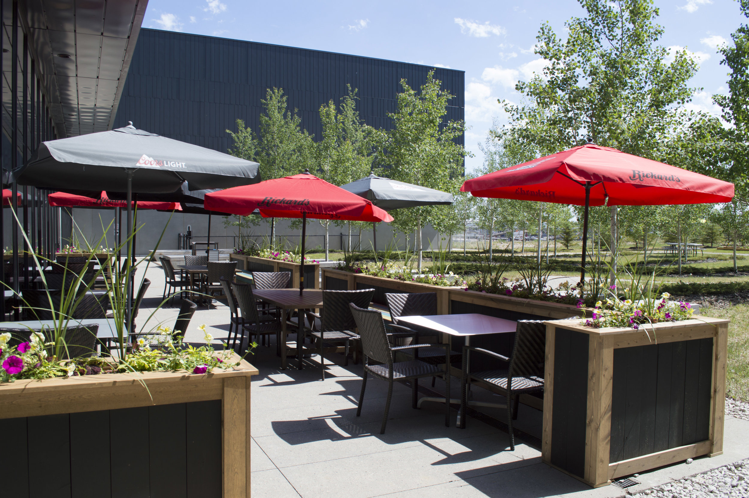 YMM-Patio2.jpg