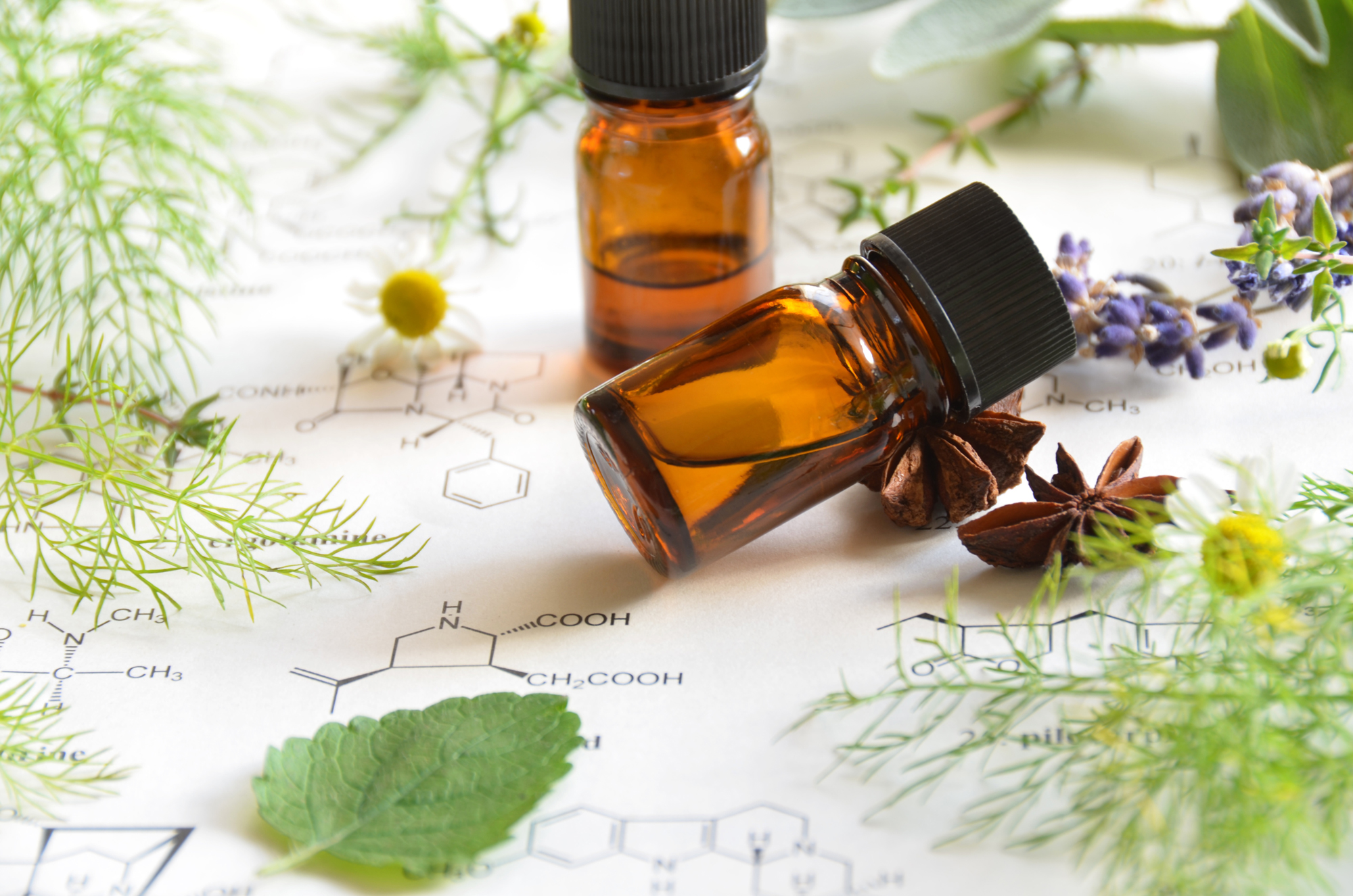 a.scent filled life - Essential oils are revolutionizing the way families manage their health. Do you need safe, effective, and affordable health solutions? You have choices.    Welcome to the world of aroma.theory
