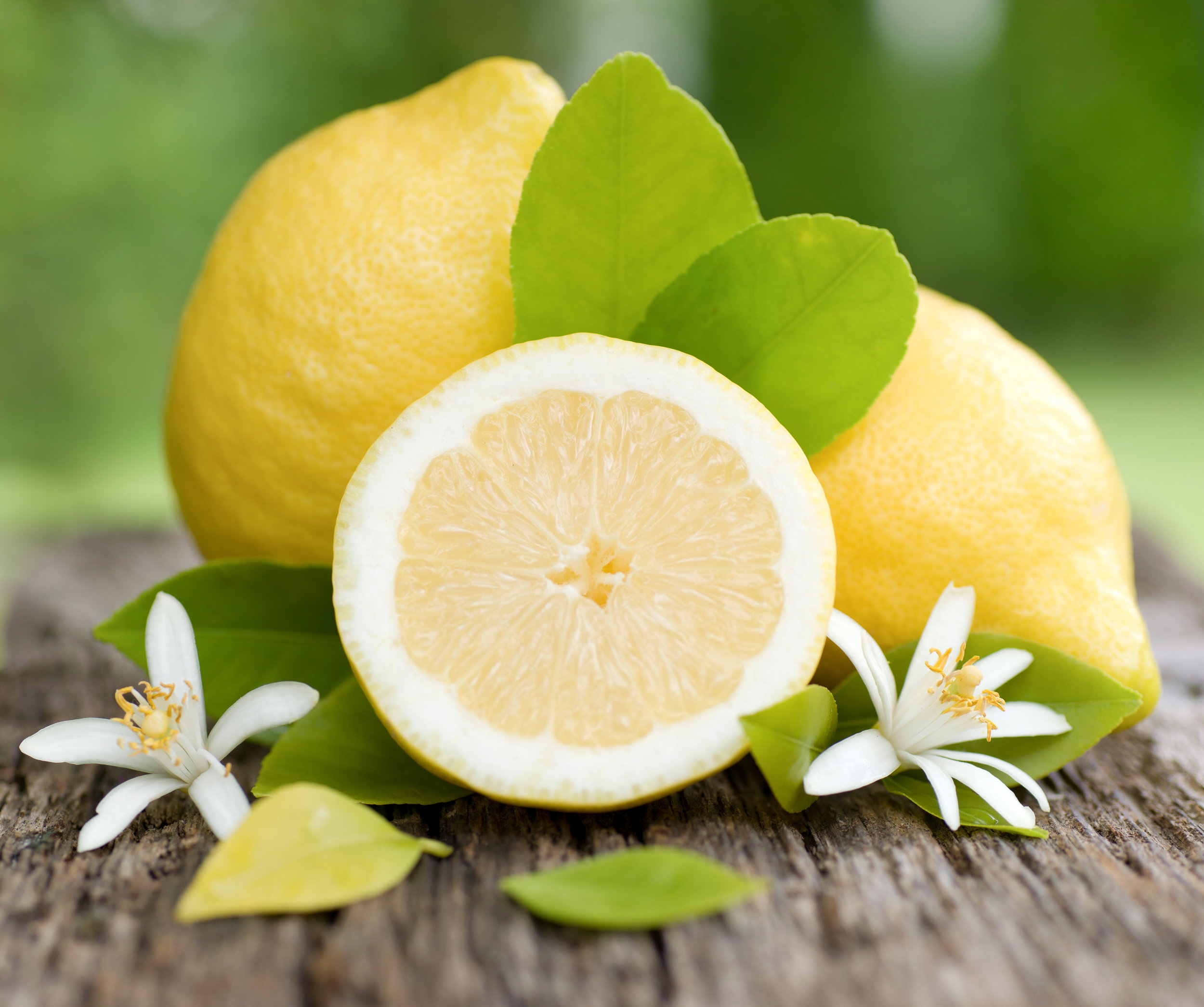 AdobeStock_42571888 lemon.jpeg