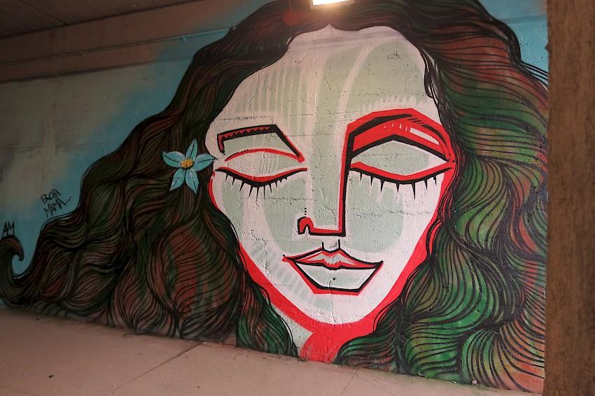 AliceMizrachi_chicago_mural_2015.850x0.jpg