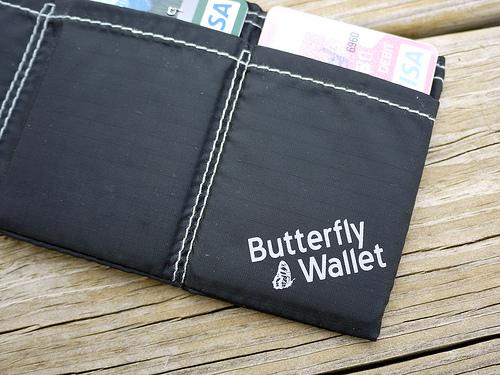 butterfly_feat.jpg