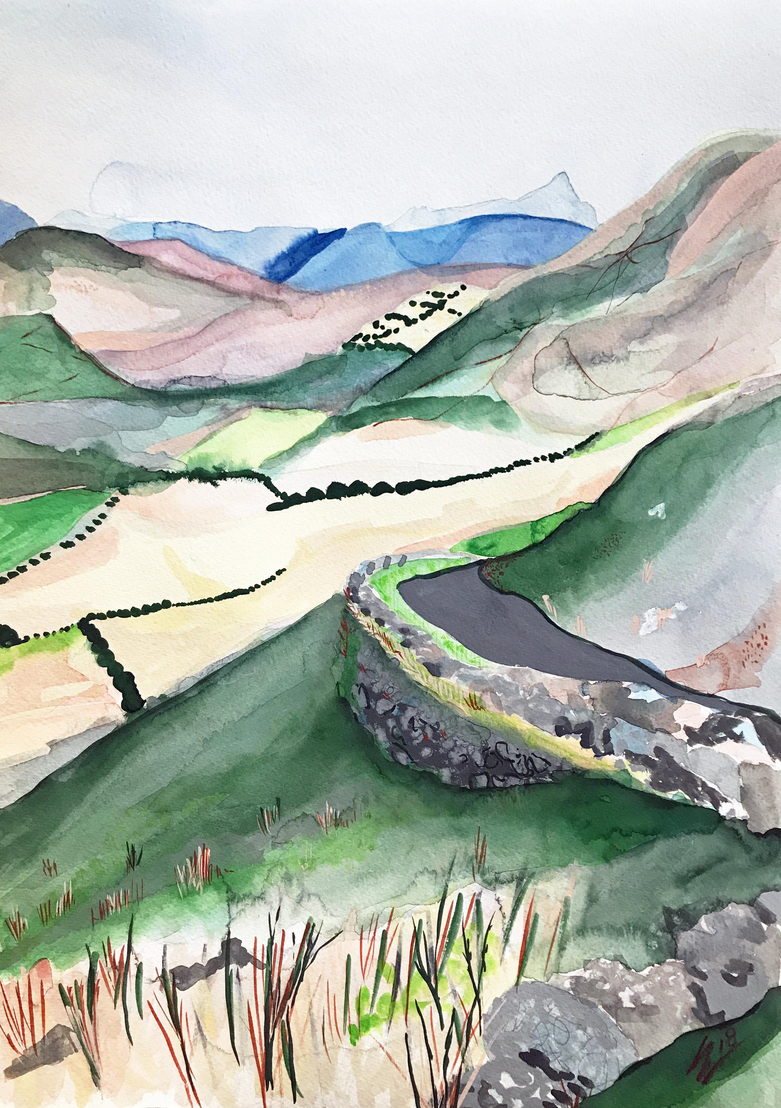 Fields of Ireland by Leah Gay 2018.jpg
