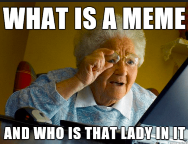 What is a meme, and who is that lady in it