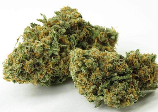 popular-weed-strains-2.jpg