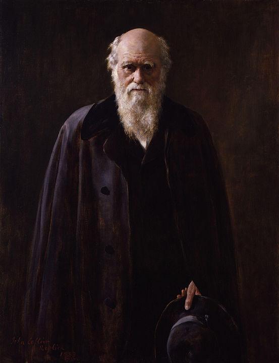 Charles Darwin ritratto di John Collier