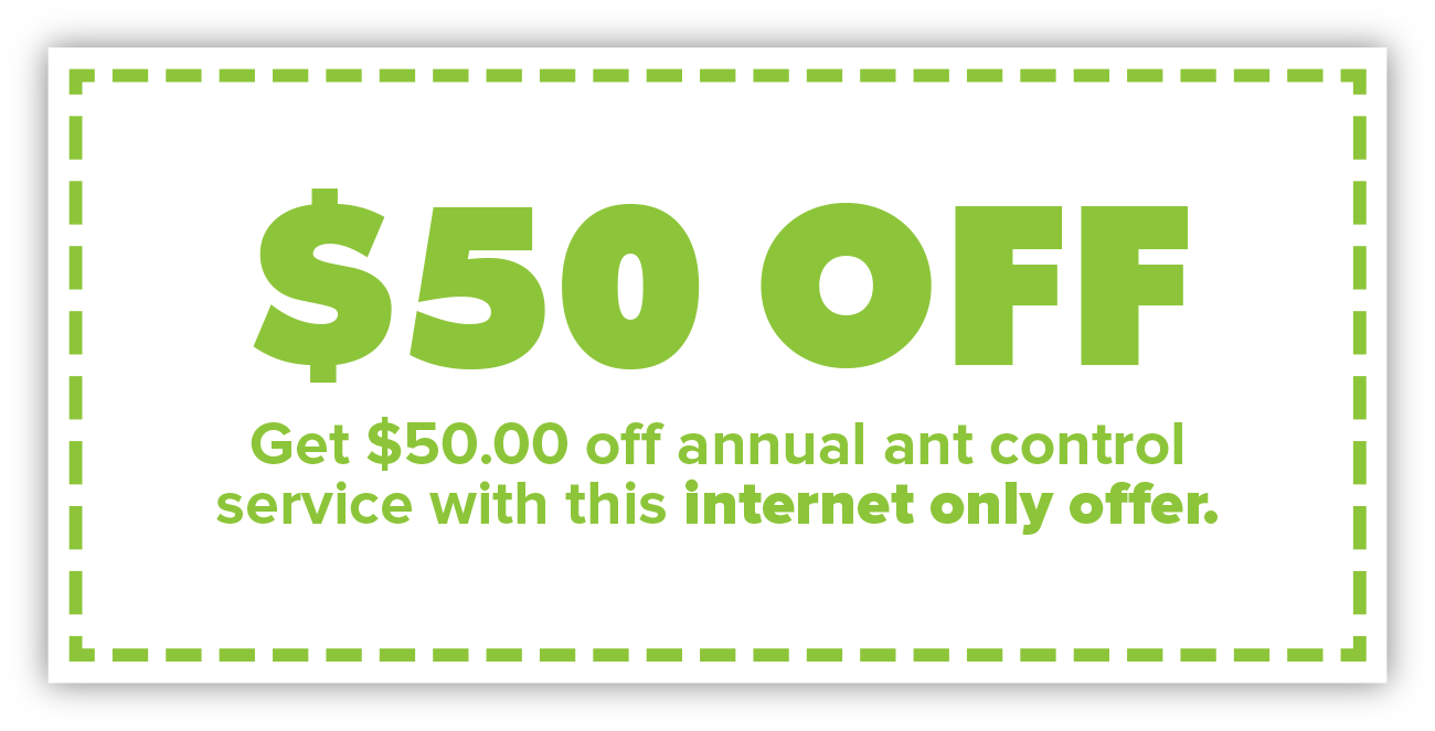 Alta_Web_Coupon.jpg