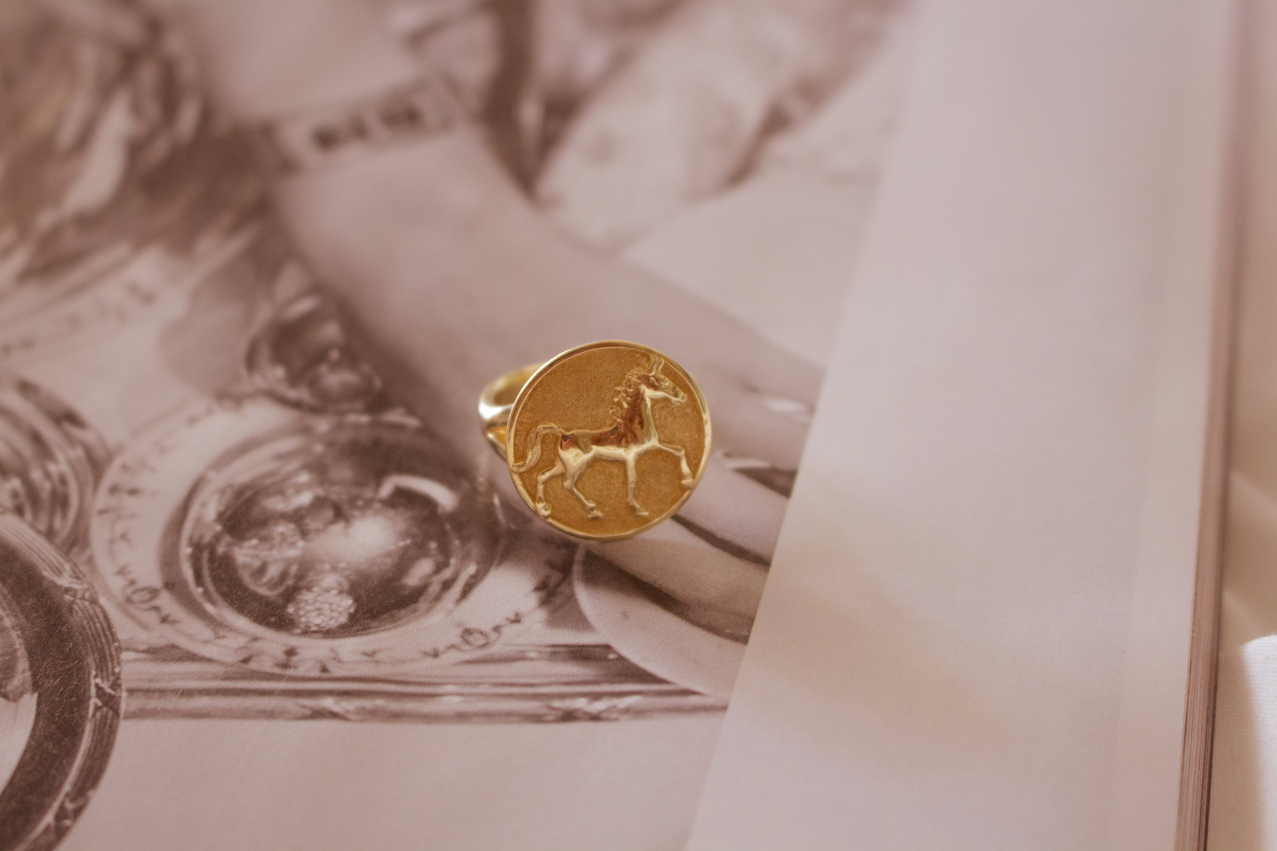 Brand Photography | Beautiful Horse Jewelry | Fresh Off The Press 4