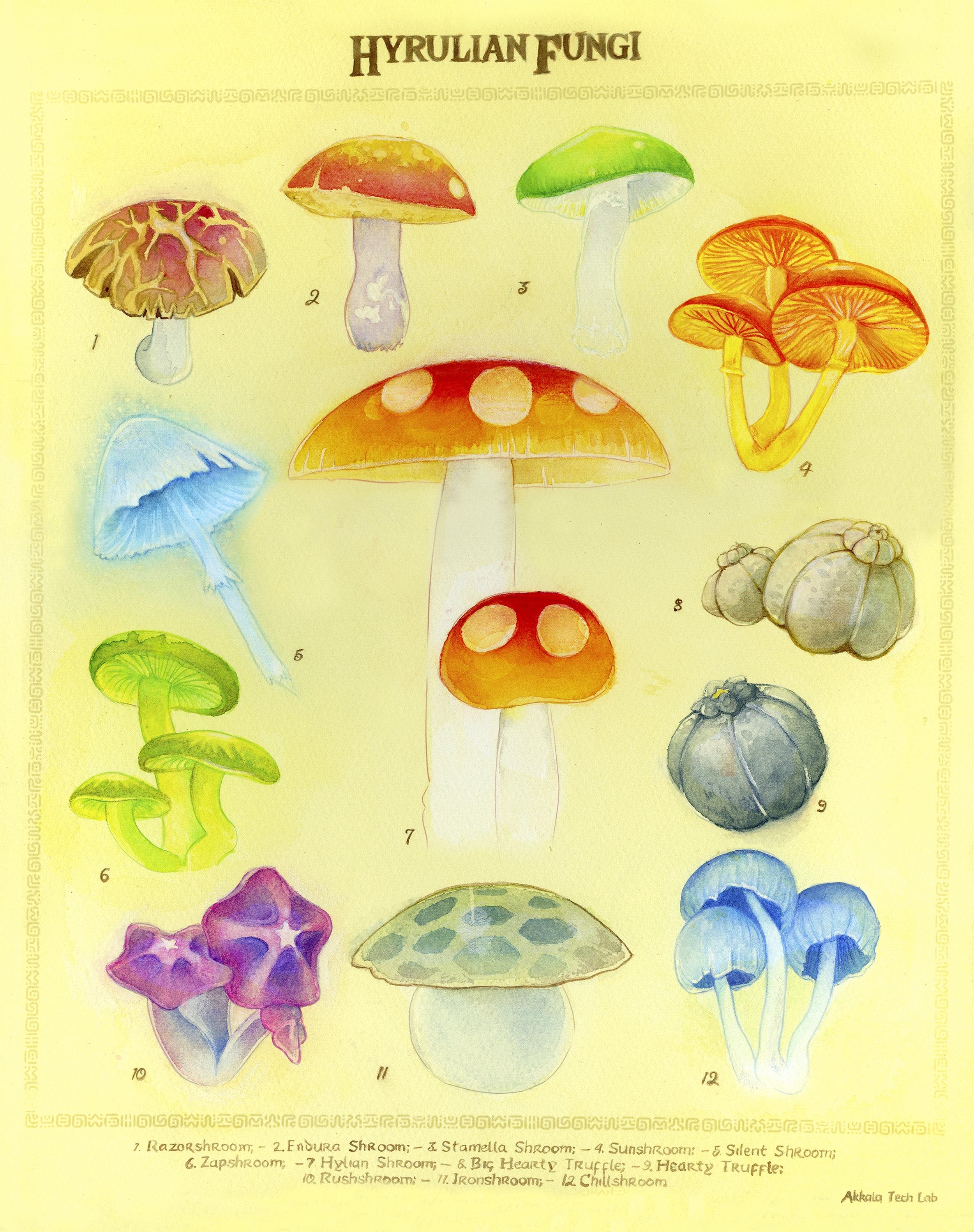 Hyrulian Fungi