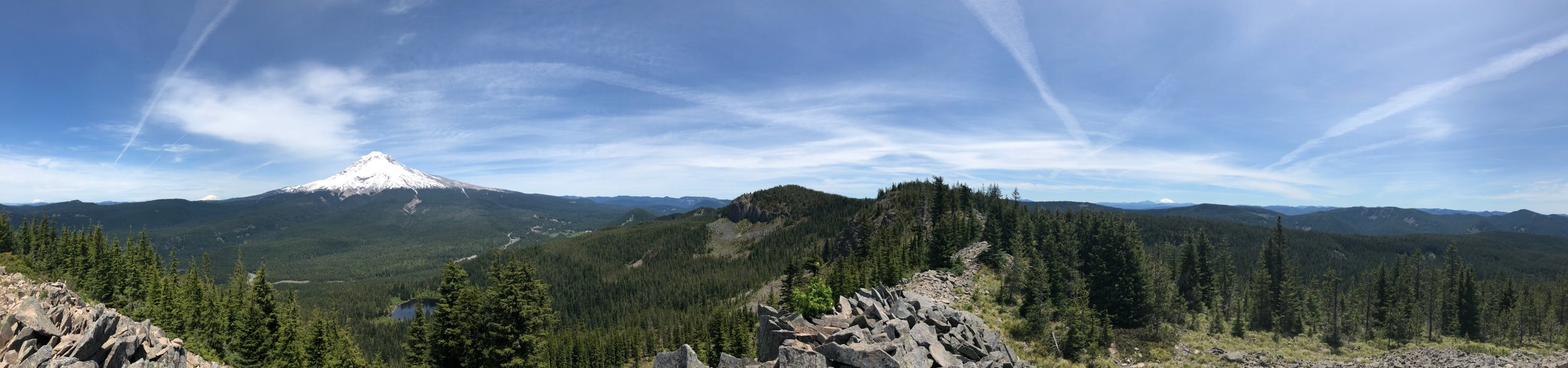 From the top of the mountain! If you zoom in, you can see the following (left to right): Mt. Saint Helens, Mt. Rainier, Mt. Adams, Mt. Hood (the big one!), and Mt. Jefferson. I am so lucky that I did this hike on Tuesday - the following two days were rainy and foggy and I wouldn't have been able to see with such clear visibility.