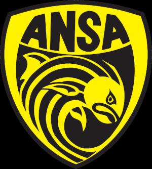Ansa logo.png