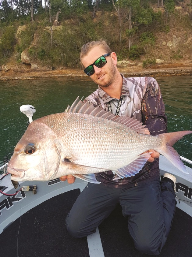 There are increasing reports of good sized snapper being caught.