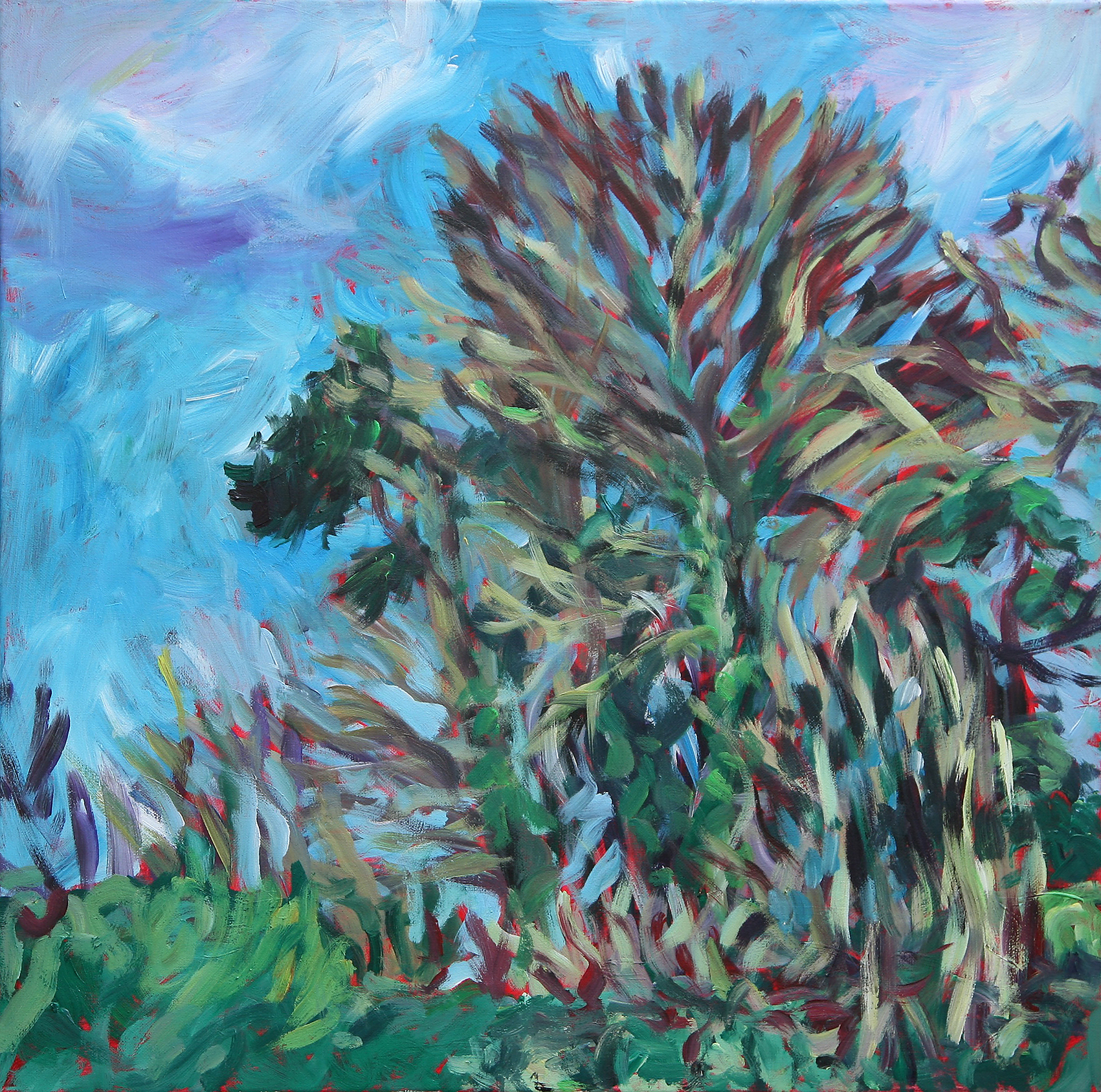 Garden Wall , Wiltshire    acrylic on canvas    60 by 60 by 1.75 cm    unframed    £700