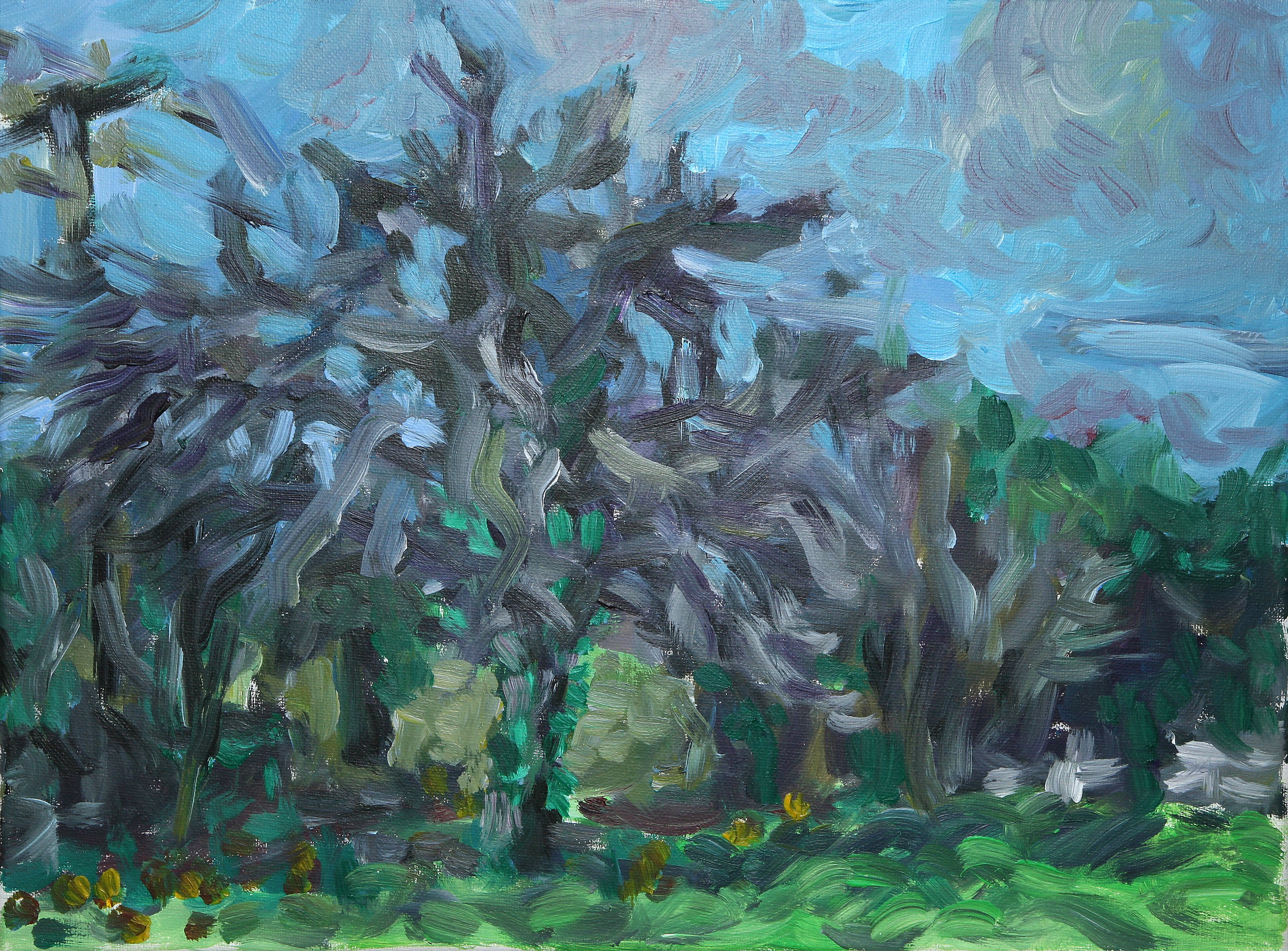 apple tree wiltshire  acrylic on canvas  £650  30 by 40 cm  unframed