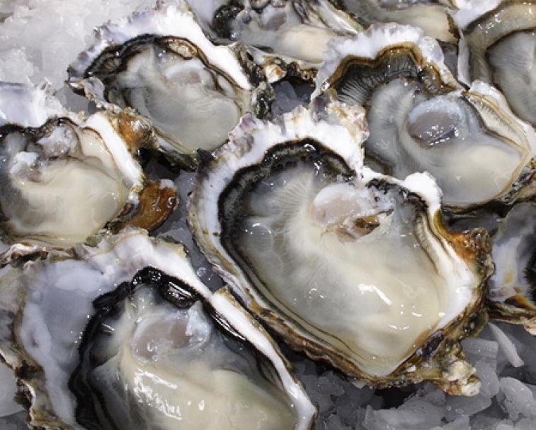 COROMANDEL OYSTER CO.   1611 Manaia Rd, Manaia   Local seafood sensations in a beautiful seaside setting.