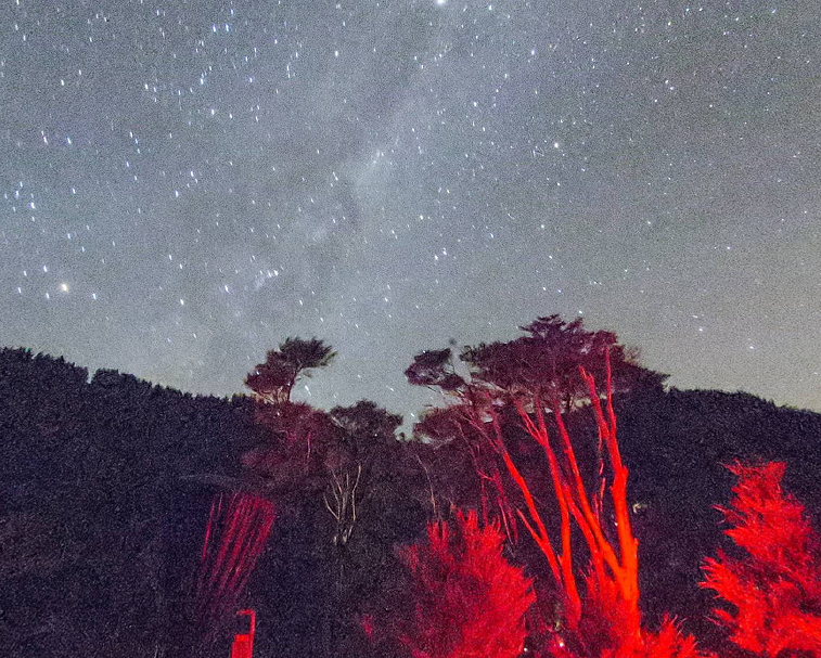 STARGAZERS OBSERVATORY   392 Wharekaho Rd, Kuaotunu   A chance to view our spectacular southern hemisphere sky under dark sky conditions.