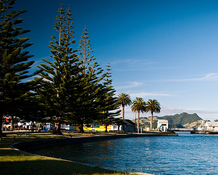 WHITIANGA BEACH   Buffalo Beach   Buffalo Beach is the main beach for Whitianga which is a large town with all services. The beach is fine for swimming, boating and even fishing off.