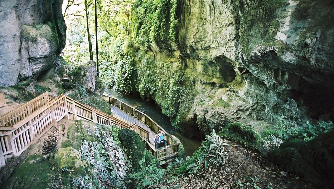 The Mangapohue Natural Bridge