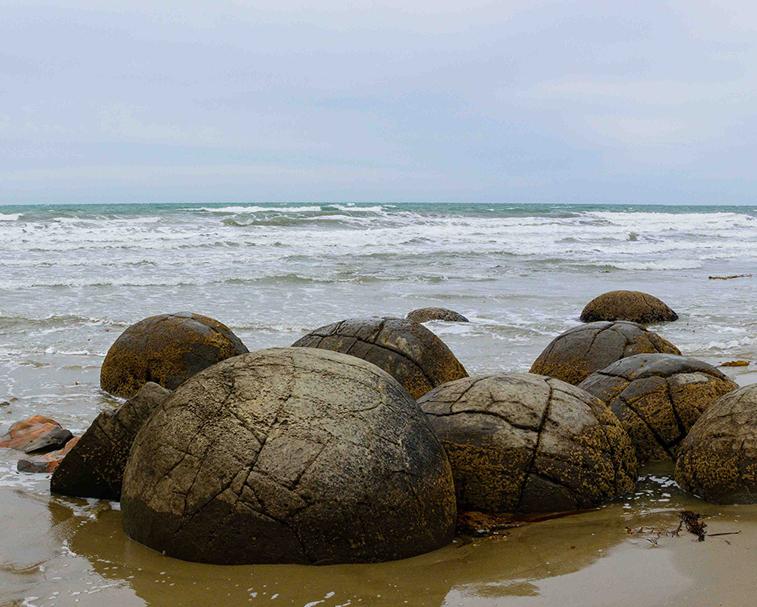 MOERAKI BOULDERS   Moeraki Beach   Explore Moeraki Boulders (tourist trap alert).