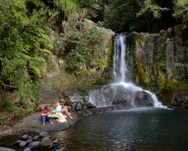 WAIAU FALLS & KAURI GROVE   The 309 Rd, Coromandel   Visit a popular swimming hole at Waiau Falls and view a mature kauri grove on this walk.  (30 mins.)