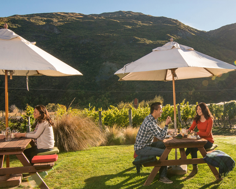 GIBBSTON VALLEY WINERY   1820 State Highway 6, Gibbston   Daily wine cave and tasting tours