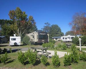 ROTORUA    All Seasons Holiday Park   50/58 Lee Rd, Hannahs Bay, Rotorua