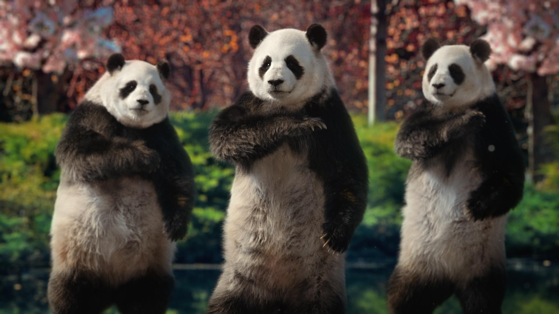 Sudocrem - Tai Chi Pandas