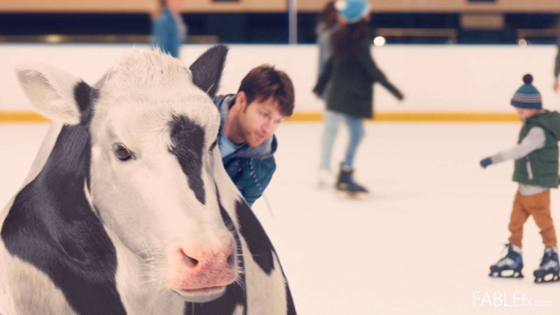 Kinder - Cow