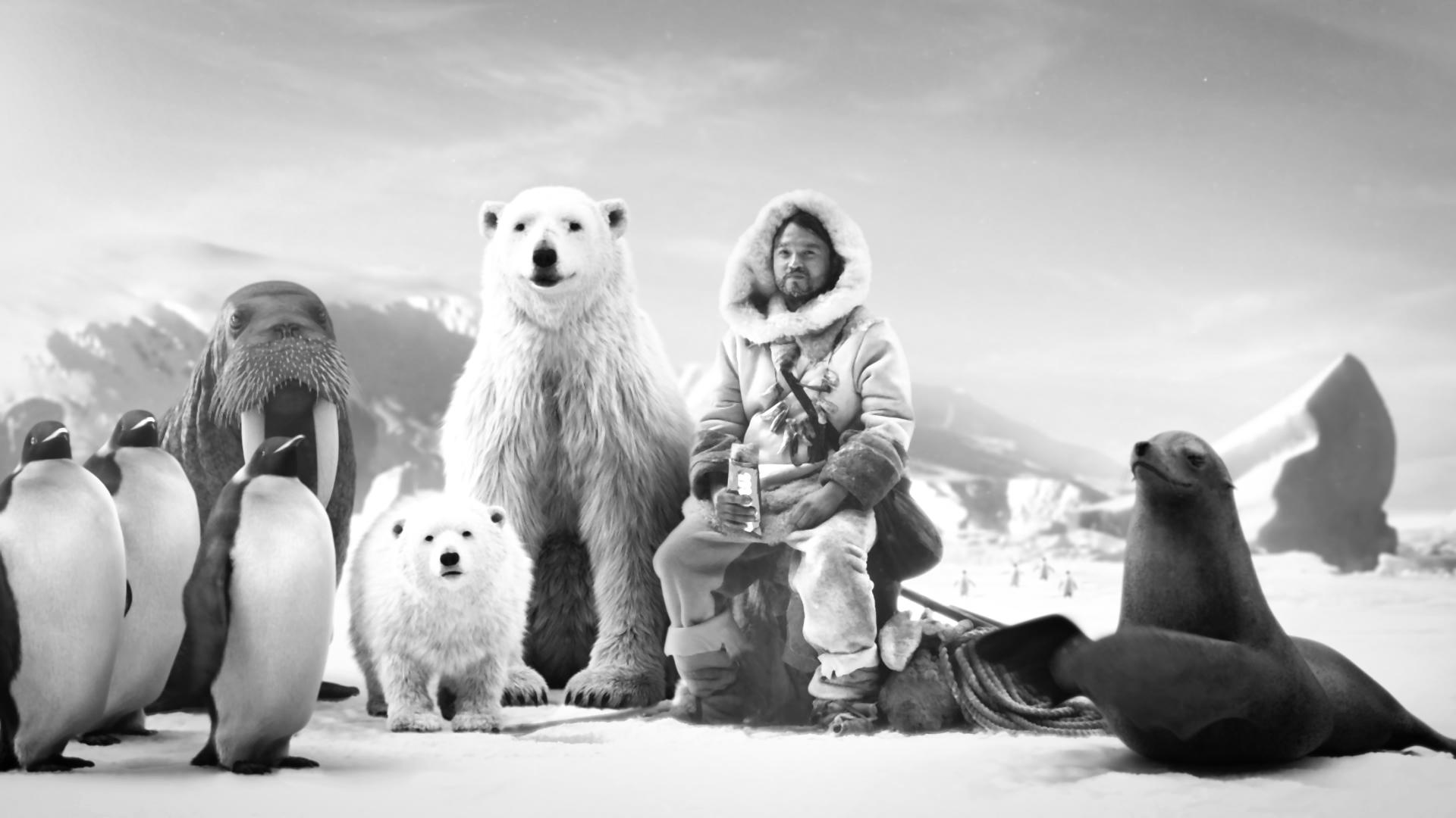 Molto Cool - Eskimo