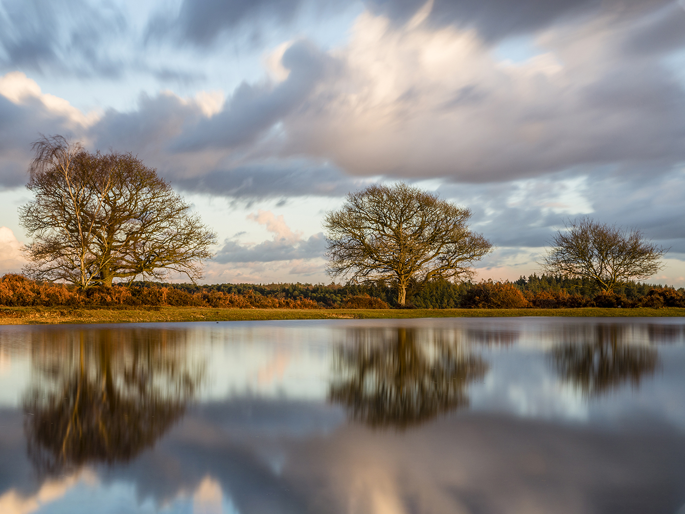 Mogshade Pond -