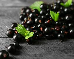 blackcurrants: a good sugar