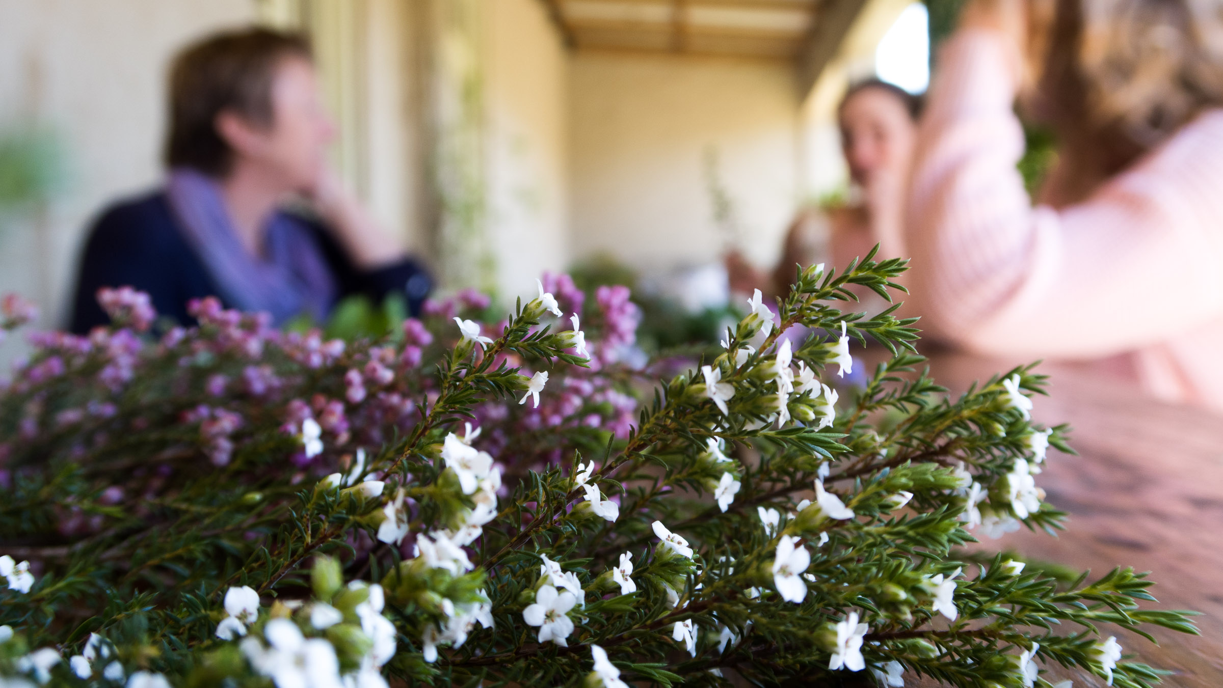 Wild-Love-Experience-retreat-guinevere-guest-farm-carly-south-africa-002.jpg