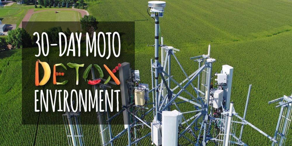 environment-detox-header.jpg